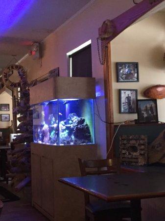 Panacea, FL: Aquarium inside of the restaurant.