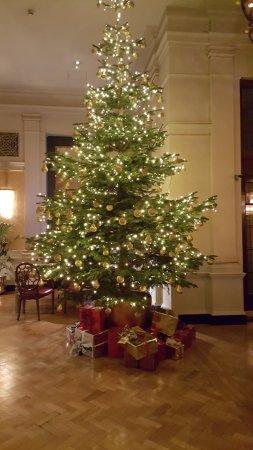 The Bloomsbury: Hotel lobby Christmas Tree December 2016