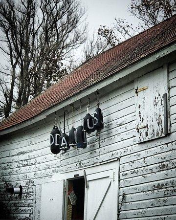 The Darius Inn: photo0.jpg