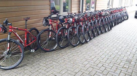 Loon op Zand, เนเธอร์แลนด์: mountainbikes