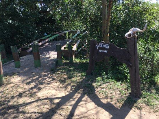 Tipilikwani Mara Camp - Masai Mara: Bridge leading into camp.