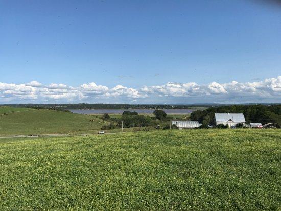 Windsor, Canada: Dakeyne Farm