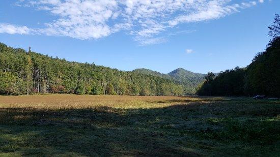 写真グレート スモーキー山脈国立公園枚