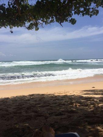 SAYURA Beach Hotel (Unawatuna, Sri Lanka) - Hotel - anmeldelser - sammenligning af priser ...