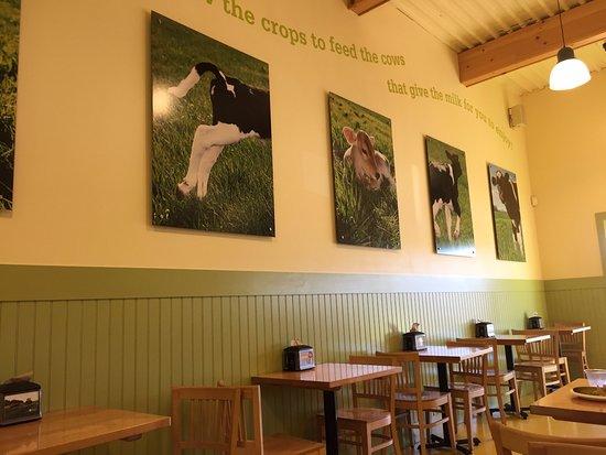 Mansfield Center, Коннектикут: Farmer's Cows Calfe & Creamery