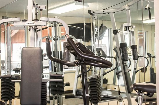 Comfort Inn & Suites Dimondale: MIFitness