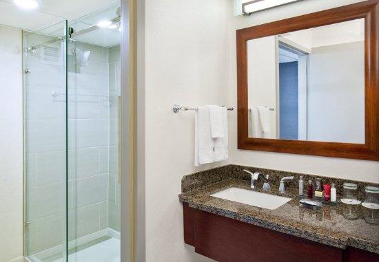 Park Ridge, Nueva Jersey: Guest Bathroom