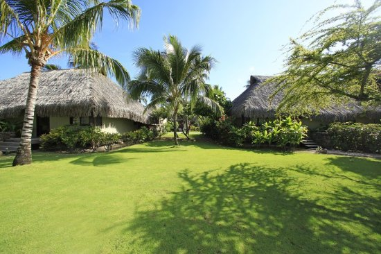 Hilton moorea lagoon resort spa updated 2017 prices for Garden pool bungalow