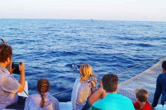 Sunrise Sailing Trip in Mallorca with...