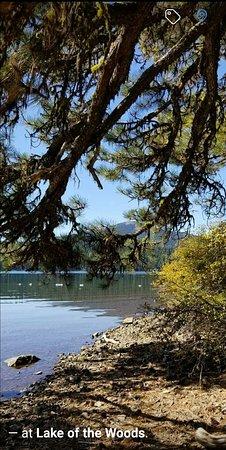 Lake of the Woods Resort: SmartSelectImage_2017-10-04-21-43-19_large.jpg