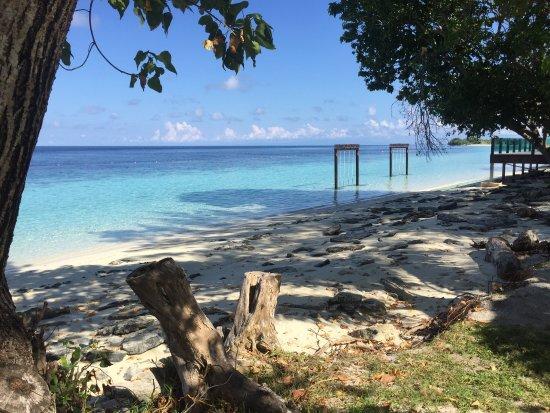 The Reef Dive Resort: photo3.jpg