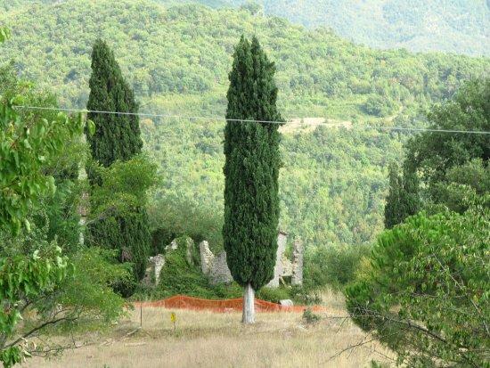 Subbiano Picture