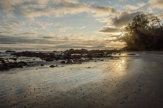 Sekiu, WA: Bullman Beach sunrise