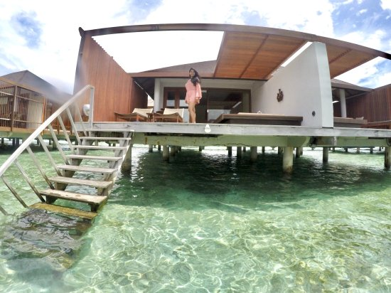 View 711 Water Villa From Your Own Lagoon Picture Of Paradise
