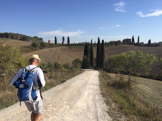 Walk About Tuscany Tours : Gianni leading the walk through the gorgeous hills near San Quirico D'Orcia