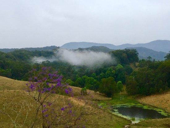 Upper Crystal Creek, Australia: photo0.jpg