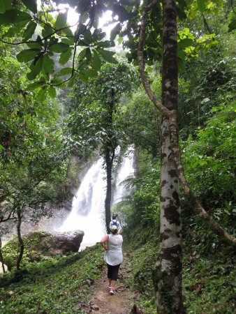 Phang Nga, تايلاند: cascade