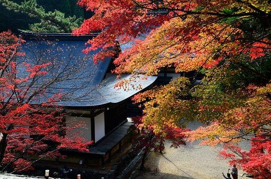 Jingoji Temple