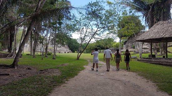 Quintana Roo, México: nella foresta