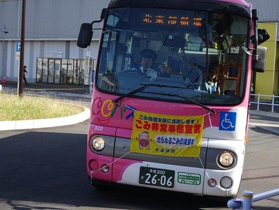 CoCo Bus