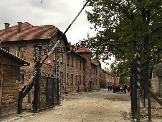 Discover Cracow Tours: photo0.jpg