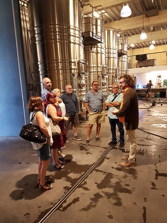 Vin en Vacances - Day Tours : Learning the process of making wine from our guide Carlos