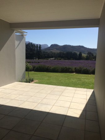 Lavender Farm Guest House Franschhoek: photo2.jpg