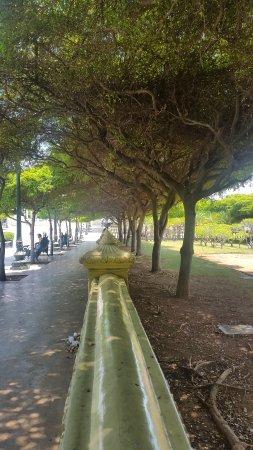 Plaza del Rosario de Nuestra Senora de Chiquinquira : La belleza de la naturaleza