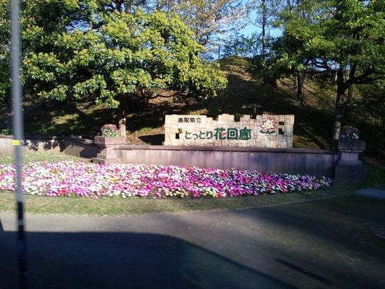 Nanbu-cho, Japan: Tottori Hanakairo Flower Park