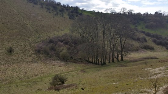 Horndean, UK: At the bottom of the valley