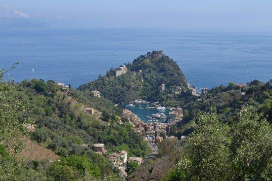 Parco Naturale Regionale di Portofino Photo