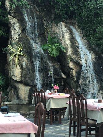 Waterfall Restaurant Resmi