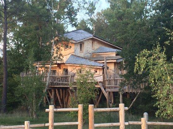 cabane dans les arbres louer picture of center parcs. Black Bedroom Furniture Sets. Home Design Ideas