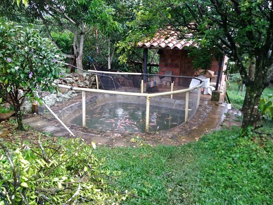 Valle de San Jose, Colombia: Pesebre natural
