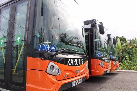 ปวงต์-อา-ปิตร์, กวาเดอลูป: Ligne de bus