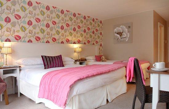 Abbeyleix Manor Hotel Picture