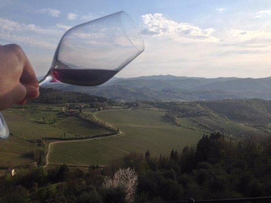 Pelago, อิตาลี: Dall'uva al bicchiere