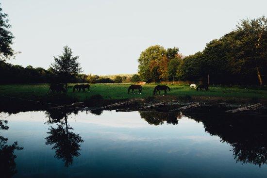 Varennes-Jarcy Photo