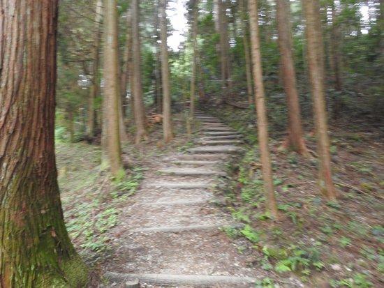 Yoshitsugu Otani Grave: 始めの方はこんな急な階段を上ります