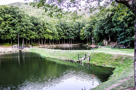 Lago lungo bagno di romagna fotos n mero de tel fono y - Lago pontini bagno di romagna ...