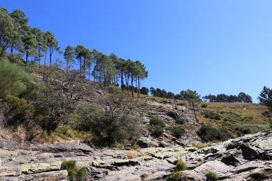 Norte de Portugal, Portugal: Pequenos riachos (àgua um pouco fria)