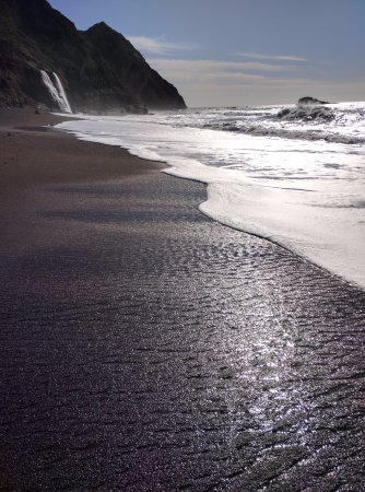 Bolinas, CA: fall with ocean as background