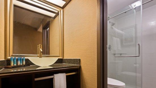 Window View - Picture of Best Western Premier Detroit Southfield Hotel - Tripadvisor