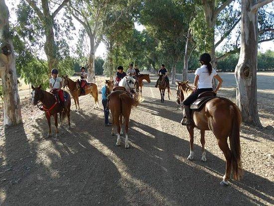 Uta, Italien: Il Primo tra i Ranch in Sardegna a praticare la monta western, e uno dei pochi centri in tutta l