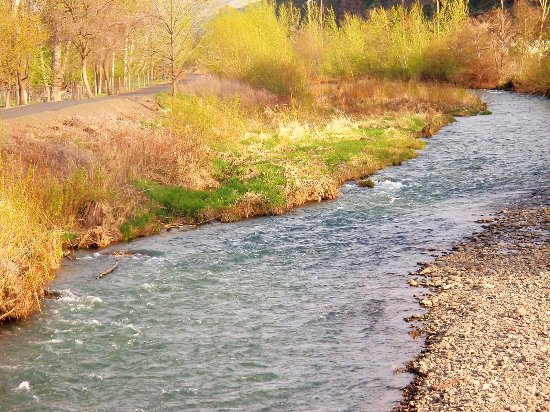 Dayton, WA: Touchet River-Amazing Fishing!  River goes right through town!
