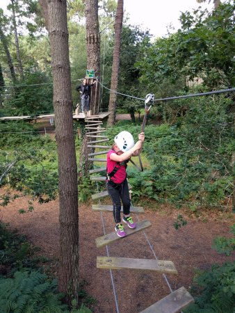 Vivons Perchés : Nice courses between trees and zip-lines with high security standards