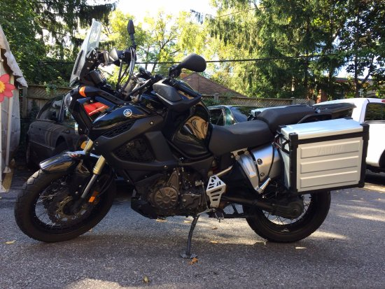 2004 Yamaha V Star 1100 - Picture of Motorcycle Rental