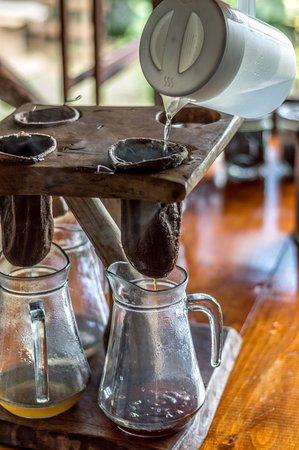 El Toledo Coffee Tour: dégustation de café