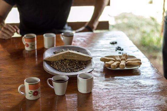 El Toledo Coffee Tour: Dégustation de plusieurs cuisson de café