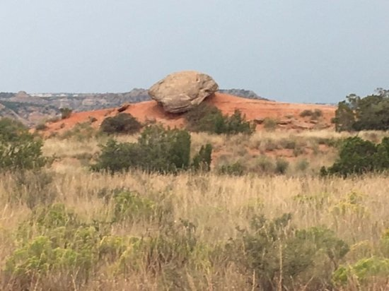 Canyon, TX: we called this snake rock...well, because it looks like a snake head!